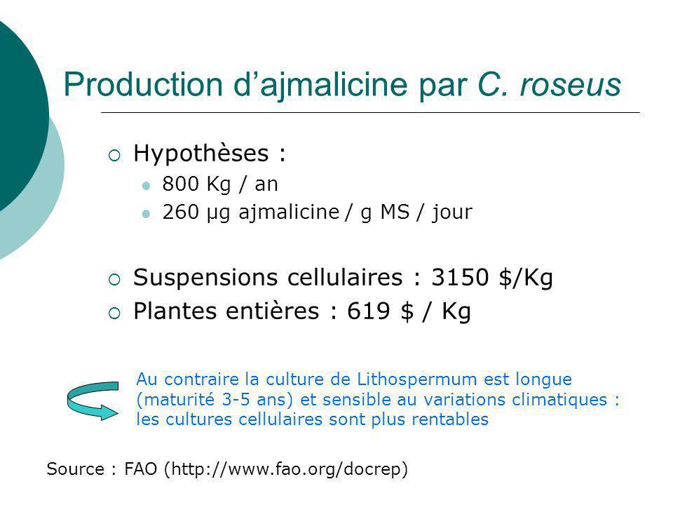 Production d'ajmalicine par C. roseus