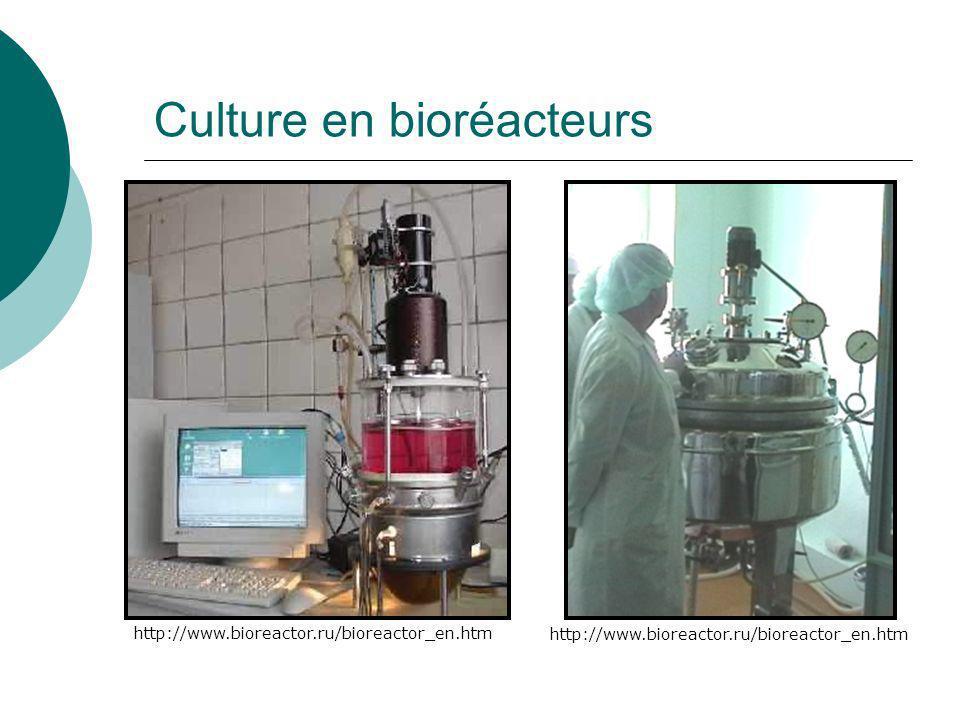 Culture en bioréacteurs