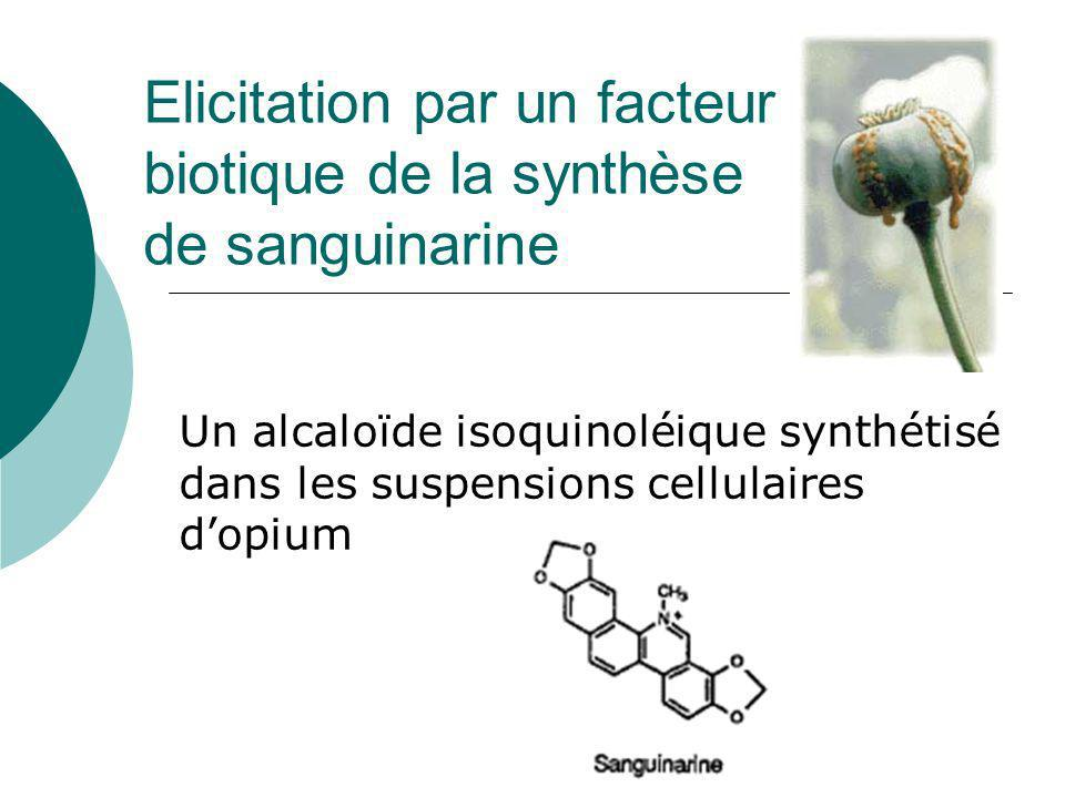 Elicitation par un facteur biotique de la synthèse de sanguinarine