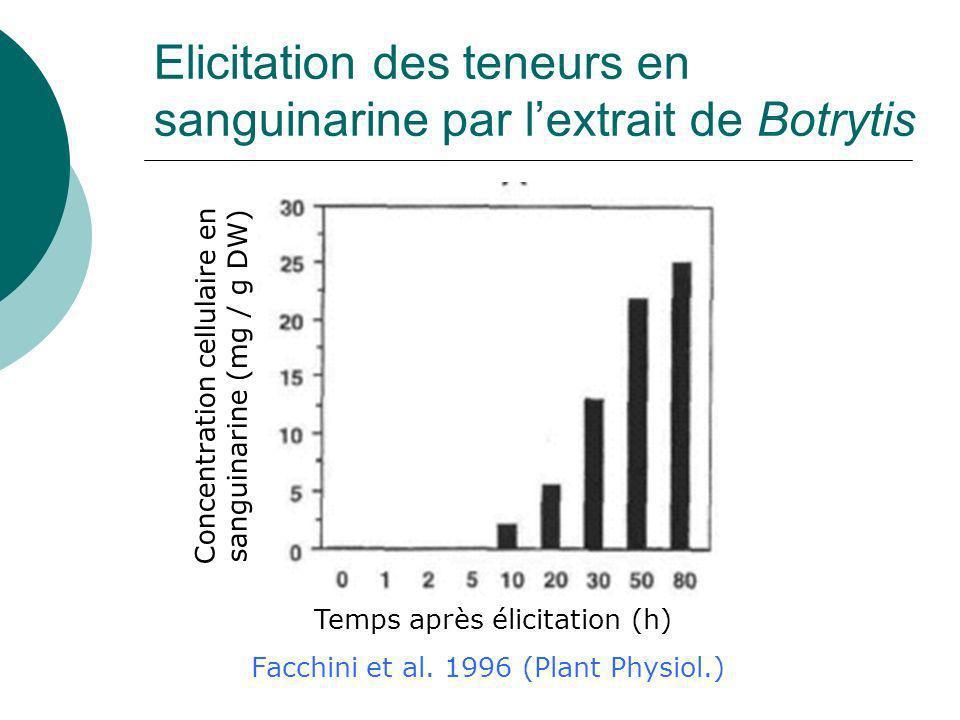 Elicitation des teneurs en sanguinarine par l'extrait de Botrytis