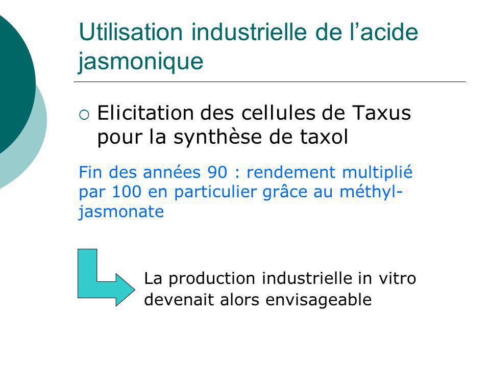 Utilisation industrielle de l'acide jasmonique