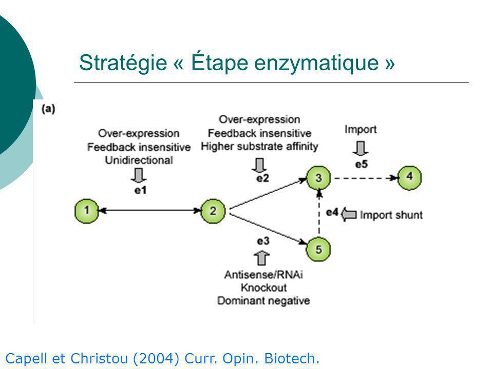 Stratégie « Étape enzymatique »