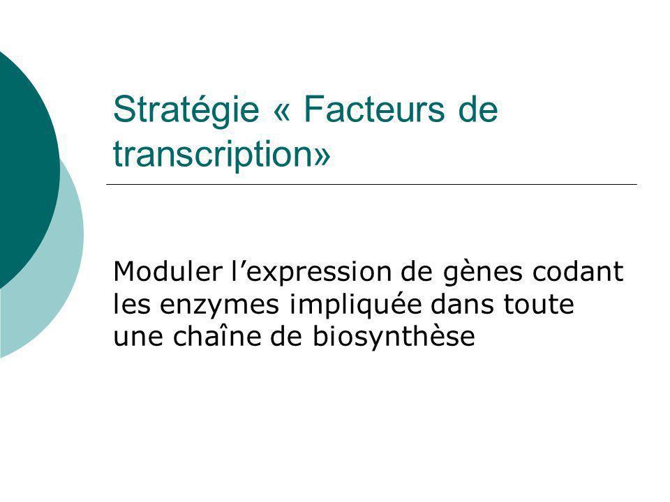 Stratégie « Facteurs de transcription»