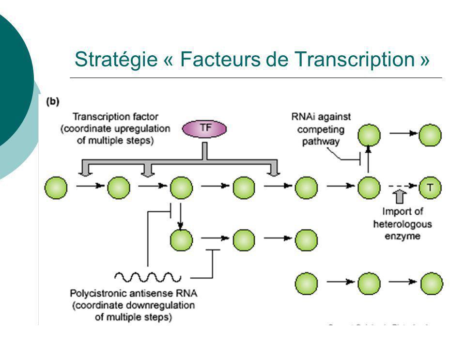 Stratégie « Facteurs de Transcription »