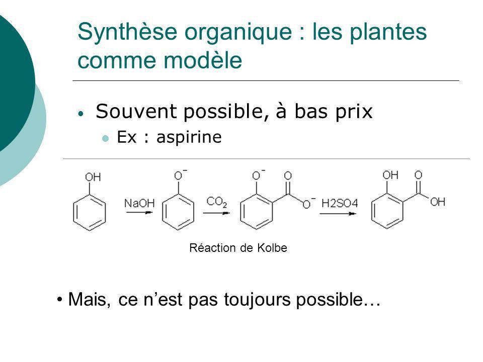 Synthèse organique : les plantes comme modèle