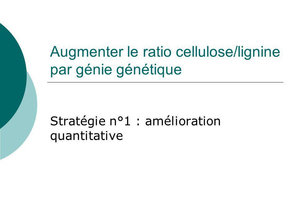 Augmenter le ratio cellulose/lignine par génie génétique