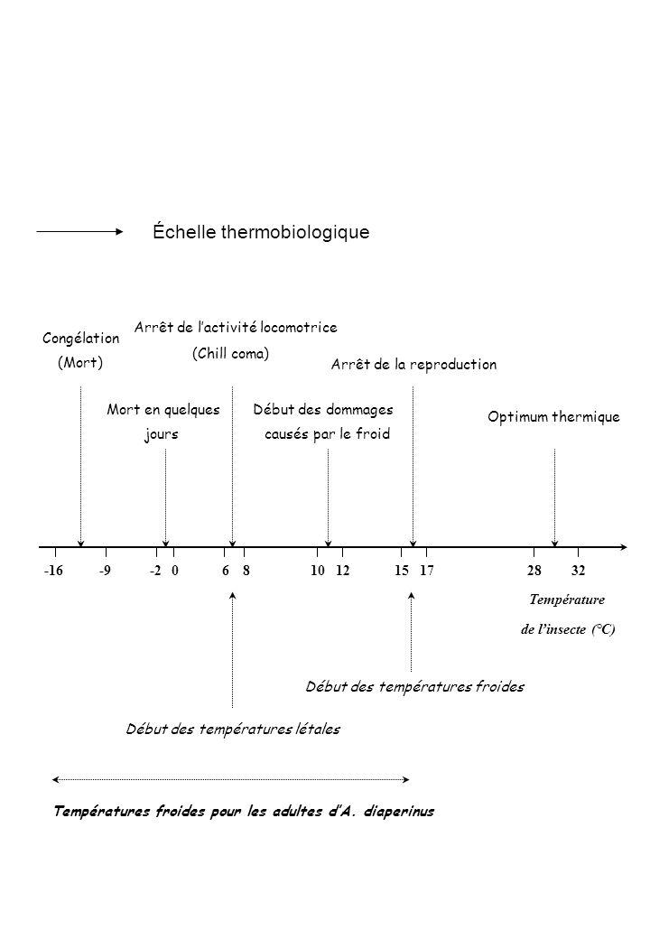 Échelle thermobiologique
