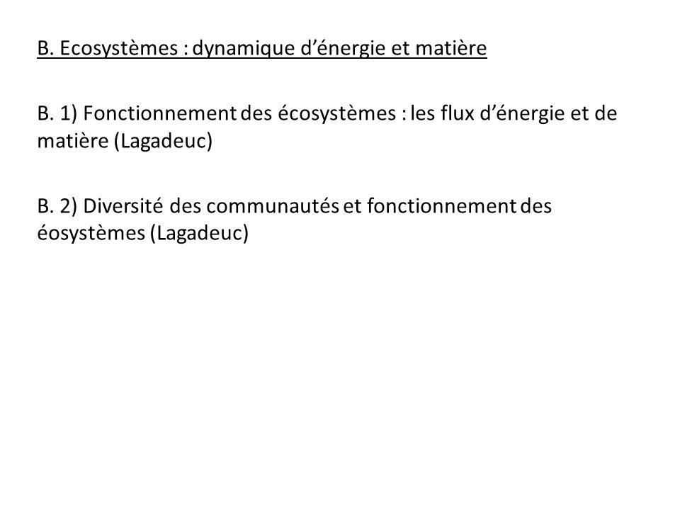 B. Ecosystèmes : dynamique d'énergie et matière