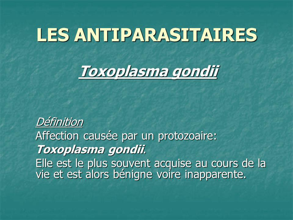 LES ANTIPARASITAIRES Toxoplasma gondii Définition