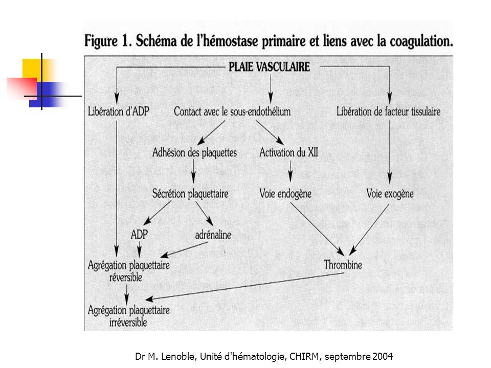 Dr M. Lenoble, Unité d hématologie, CHIRM, septembre 2004