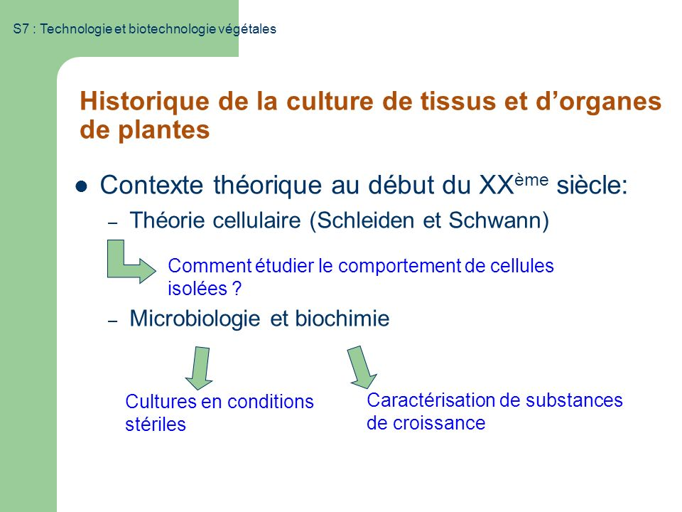 Historique de la culture de tissus et d'organes de plantes