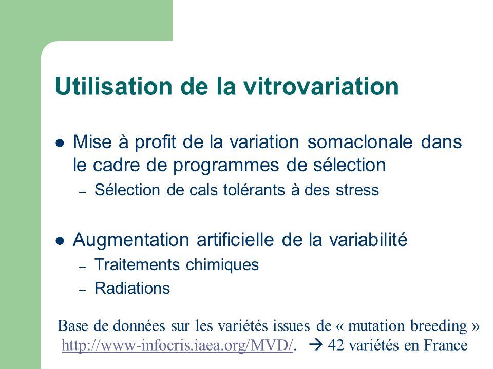 Utilisation de la vitrovariation