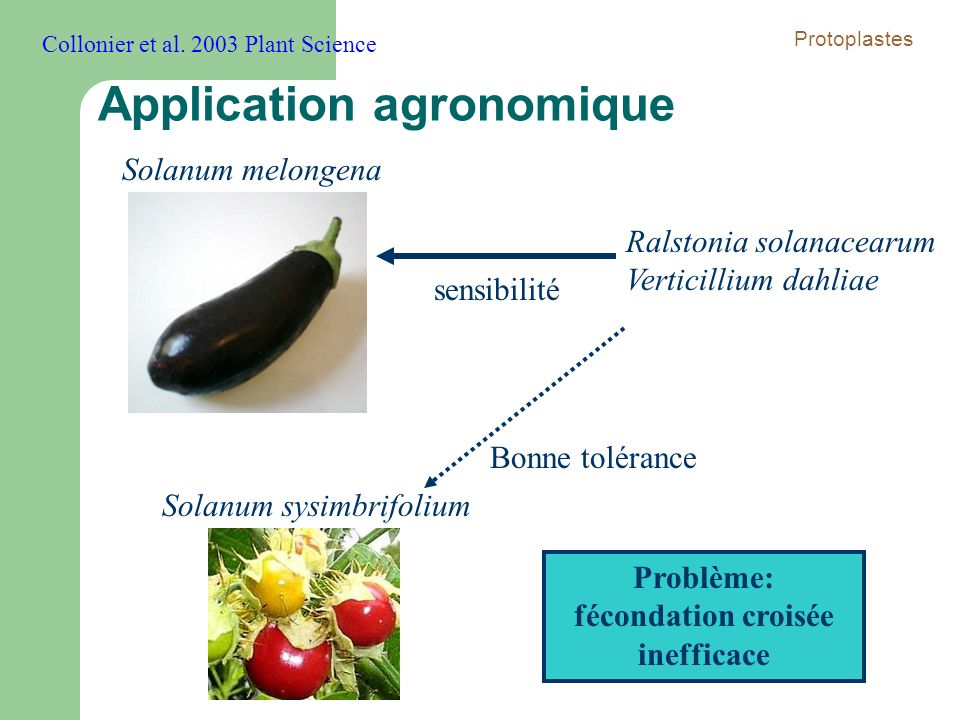 Application agronomique