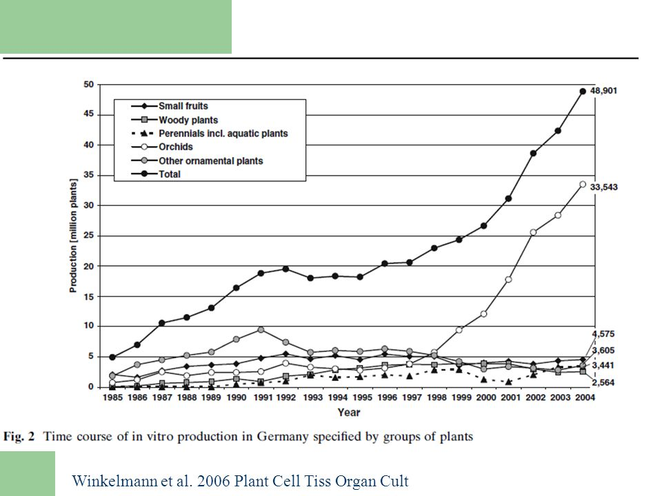 Winkelmann et al. 2006 Plant Cell Tiss Organ Cult