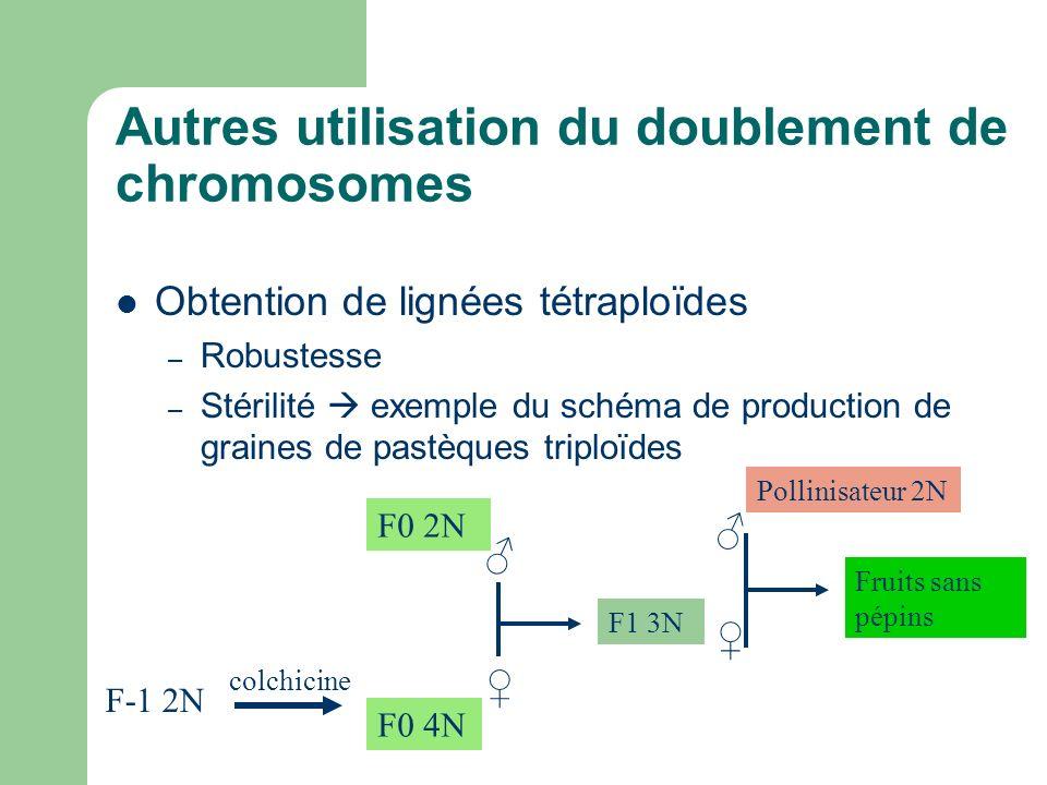 Autres utilisation du doublement de chromosomes