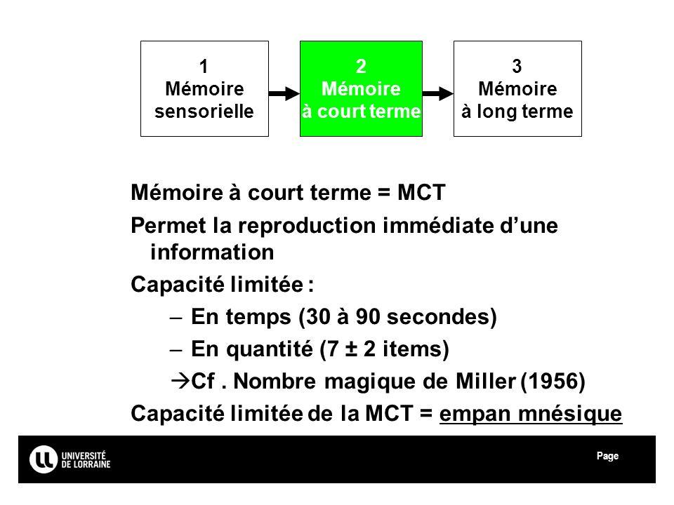 Mémoire à court terme = MCT