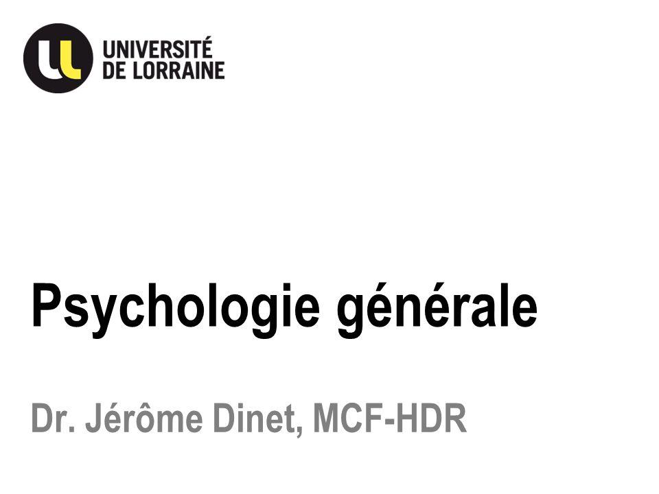 Dr. Jérôme Dinet, MCF-HDR