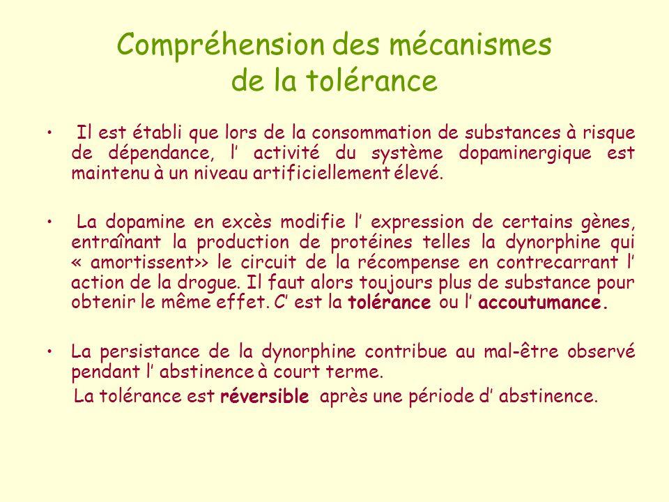 Compréhension des mécanismes de la tolérance