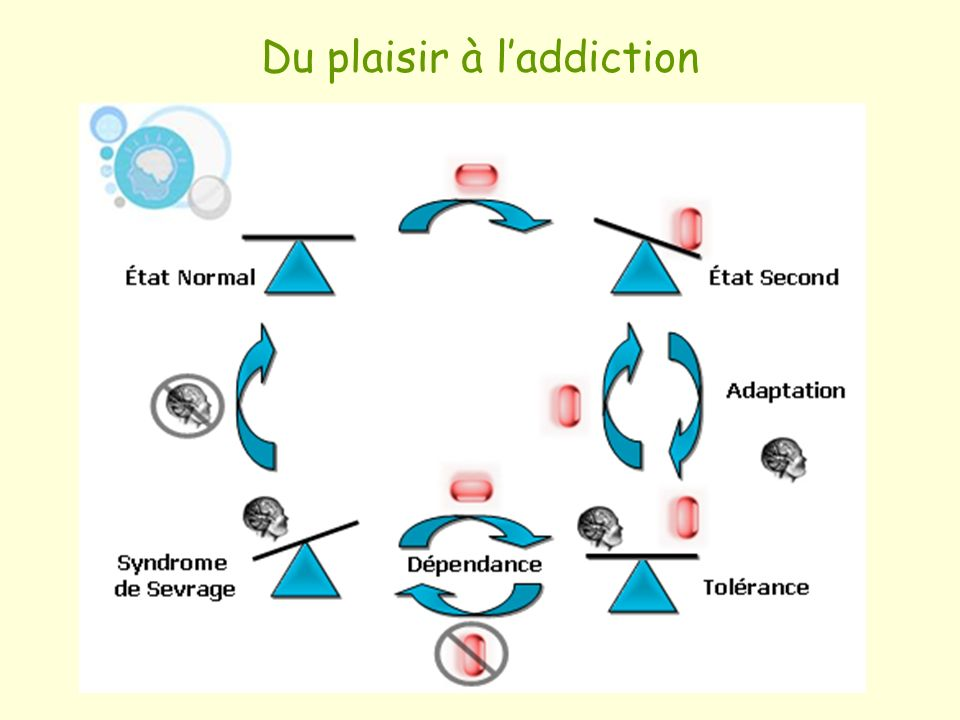 Du plaisir à l'addiction