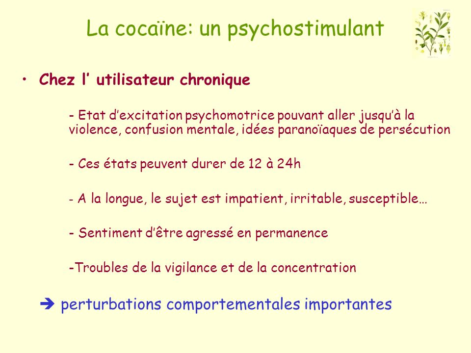La cocaïne: un psychostimulant
