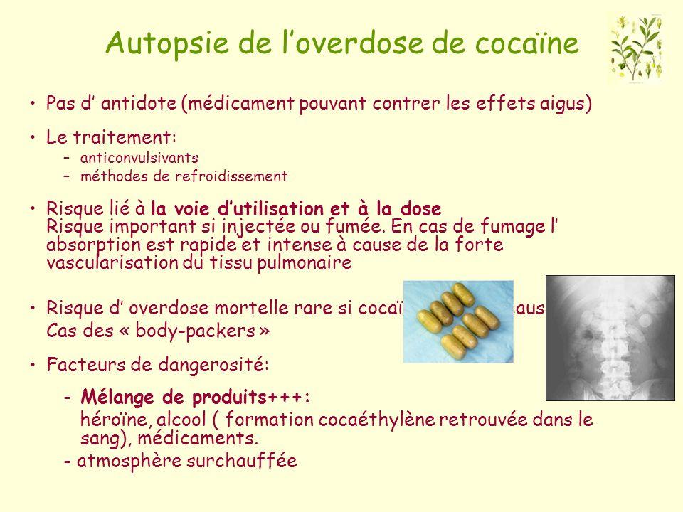 Autopsie de l'overdose de cocaïne