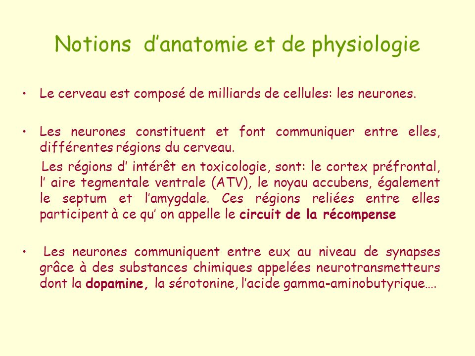 Notions d'anatomie et de physiologie