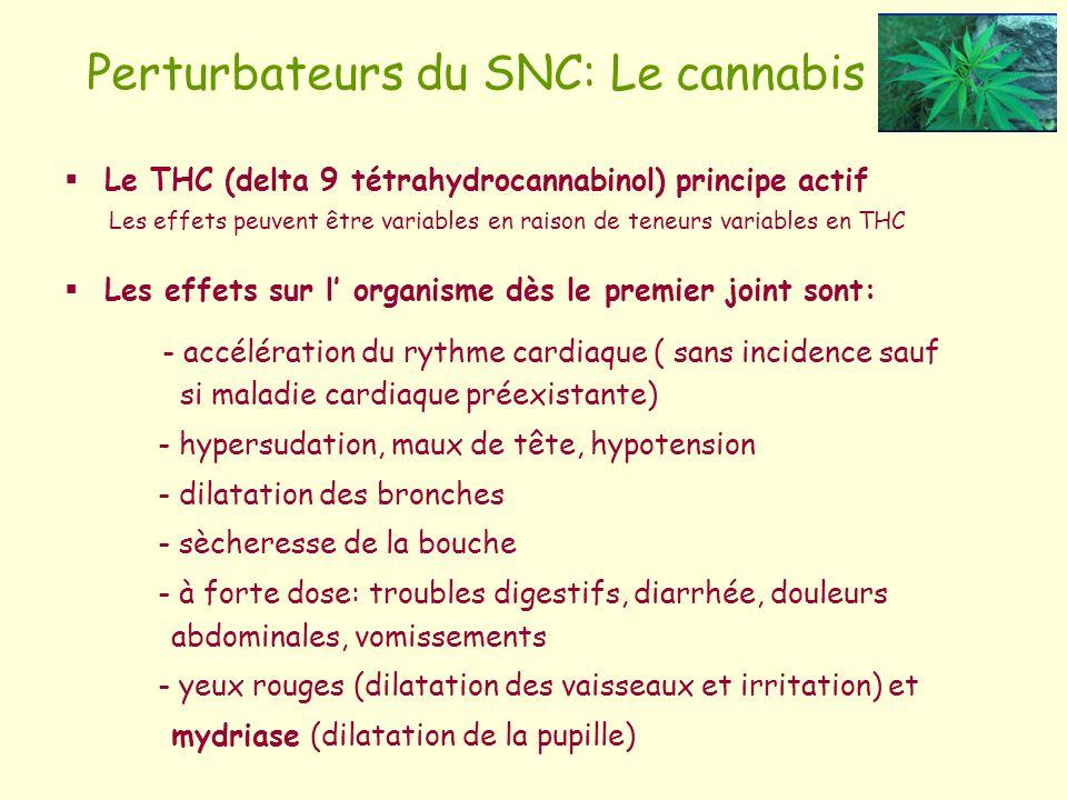 Perturbateurs du SNC: Le cannabis