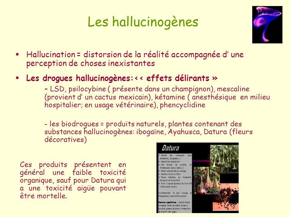 Les hallucinogènes Hallucination = distorsion de la réalité accompagnée d' une perception de choses inexistantes.