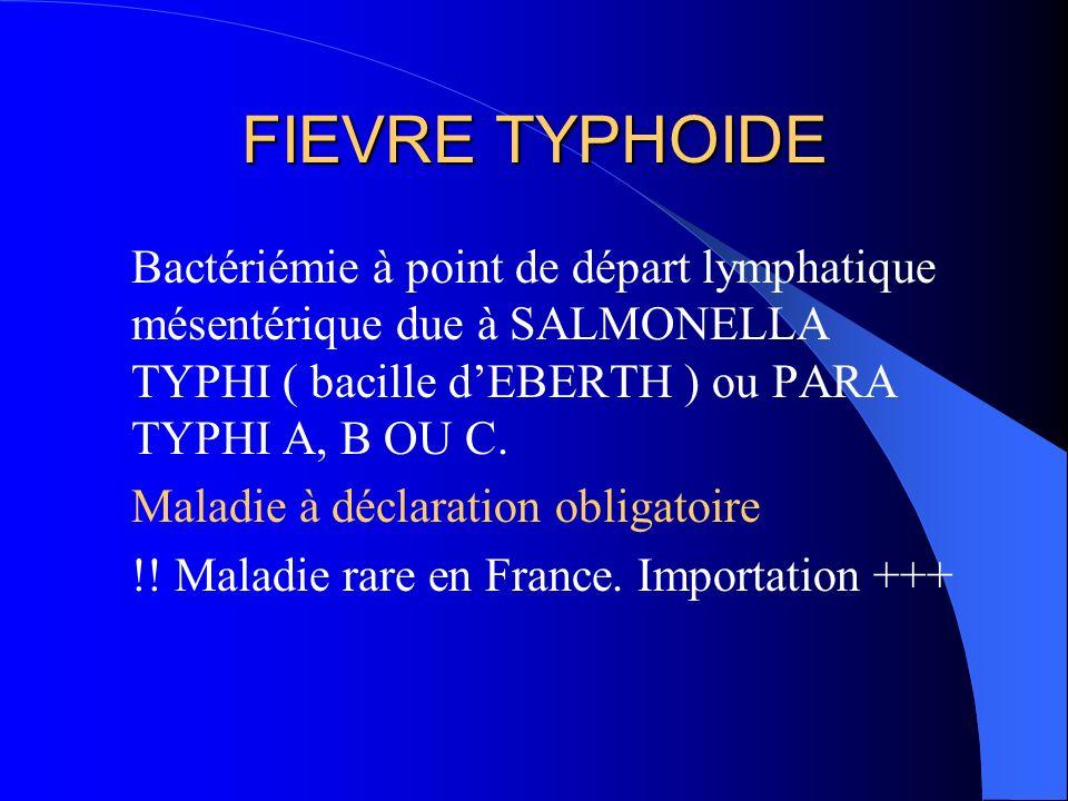FIEVRE TYPHOIDE Bactériémie à point de départ lymphatique mésentérique due à SALMONELLA TYPHI ( bacille d'EBERTH ) ou PARA TYPHI A, B OU C.