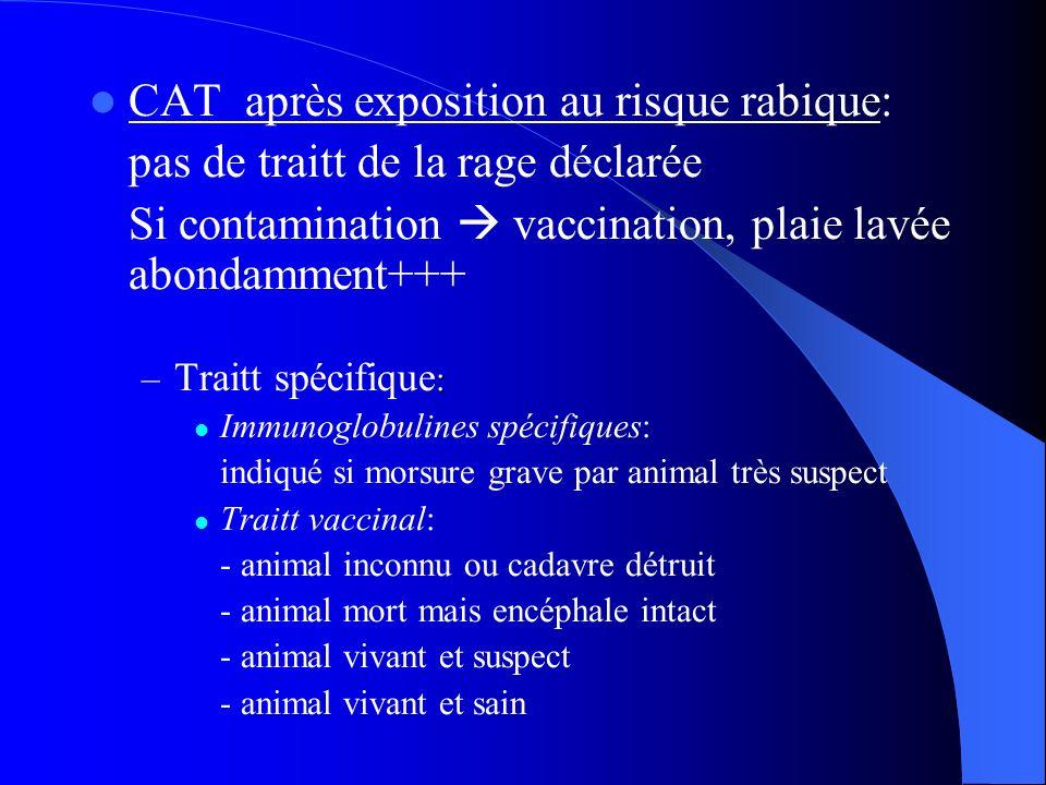 CAT après exposition au risque rabique: