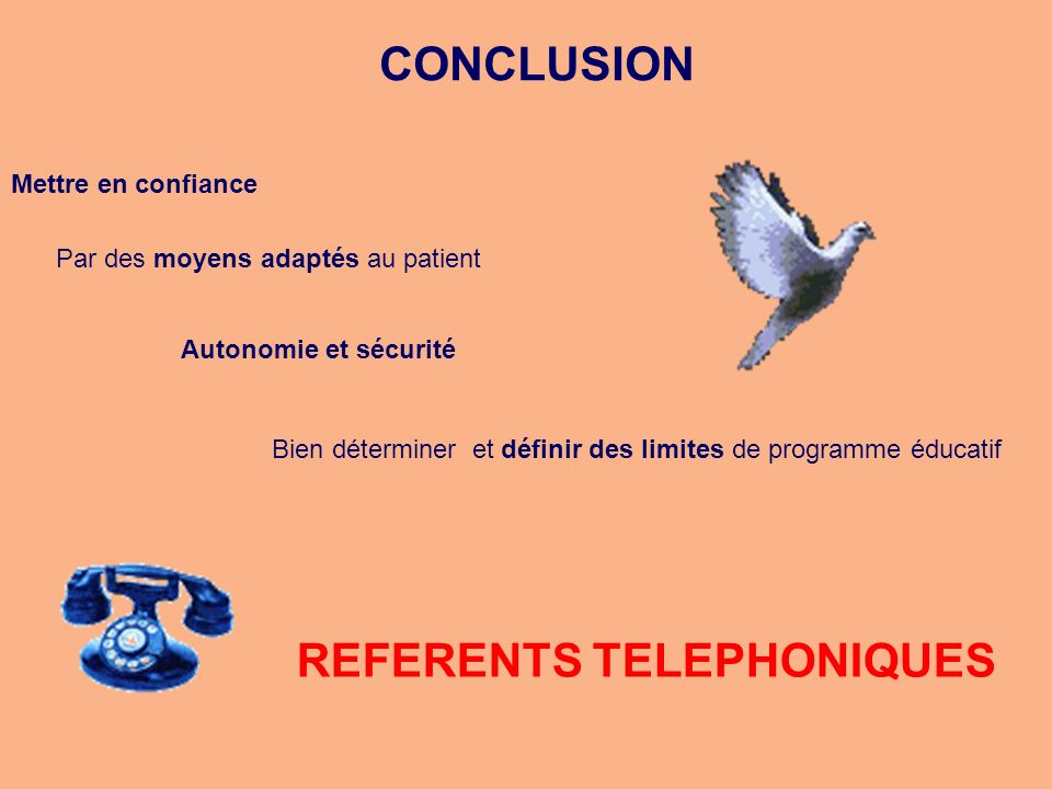 REFERENTS TELEPHONIQUES