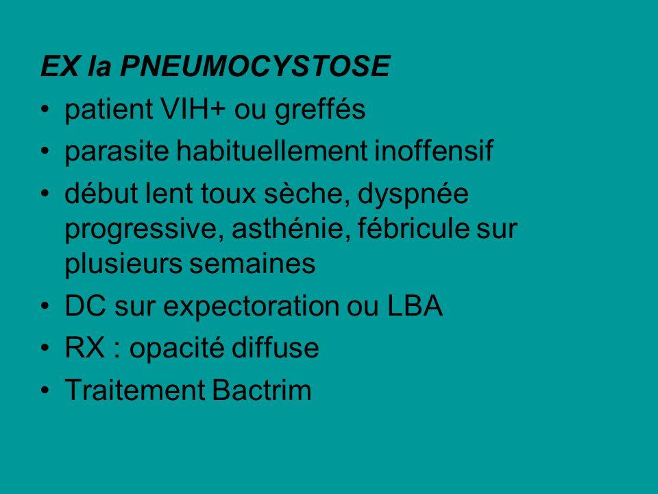 EX la PNEUMOCYSTOSE patient VIH+ ou greffés. parasite habituellement inoffensif.