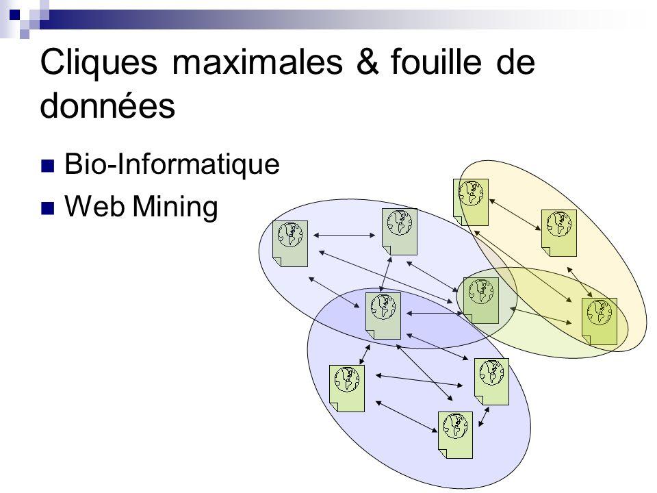 Cliques maximales & fouille de données