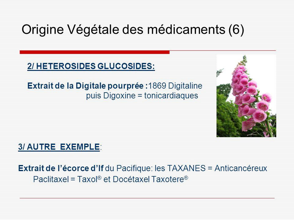 Origine Végétale des médicaments (6)