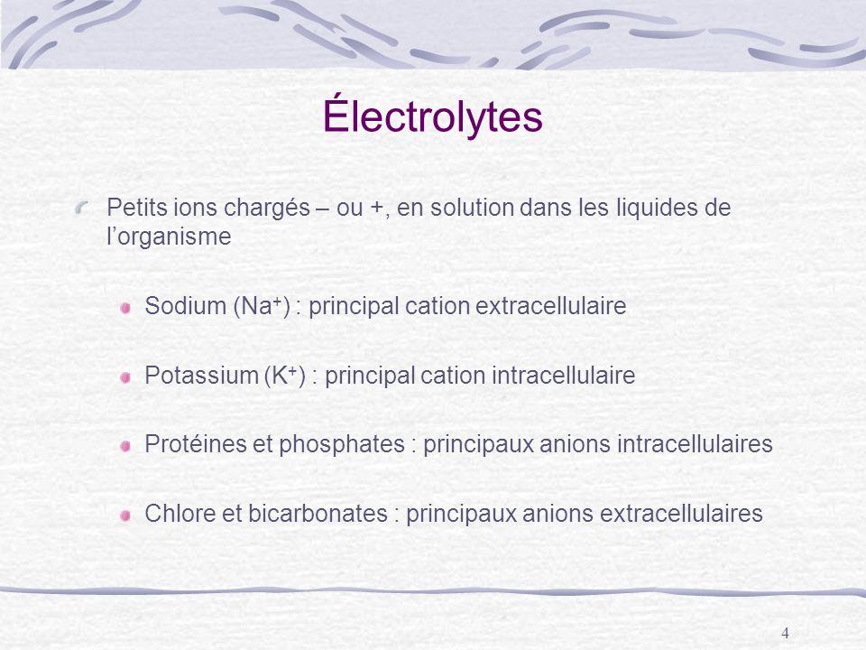 Électrolytes Petits ions chargés – ou +, en solution dans les liquides de l'organisme. Sodium (Na+) : principal cation extracellulaire.
