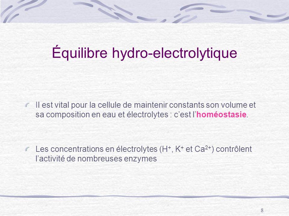 Équilibre hydro-electrolytique