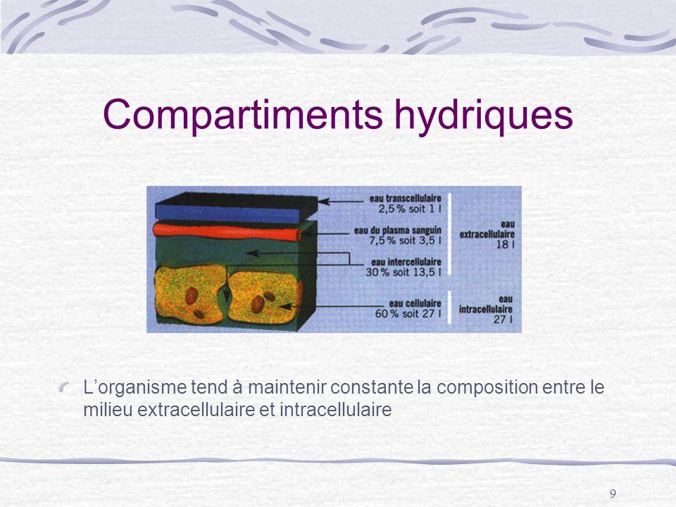 Compartiments hydriques