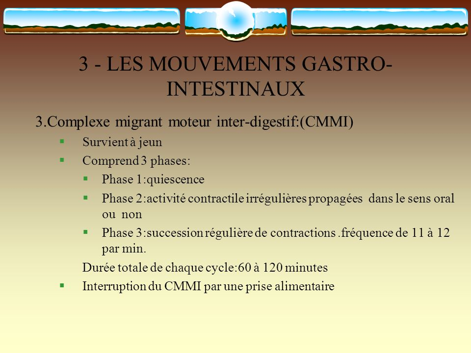 3 - LES MOUVEMENTS GASTRO-INTESTINAUX