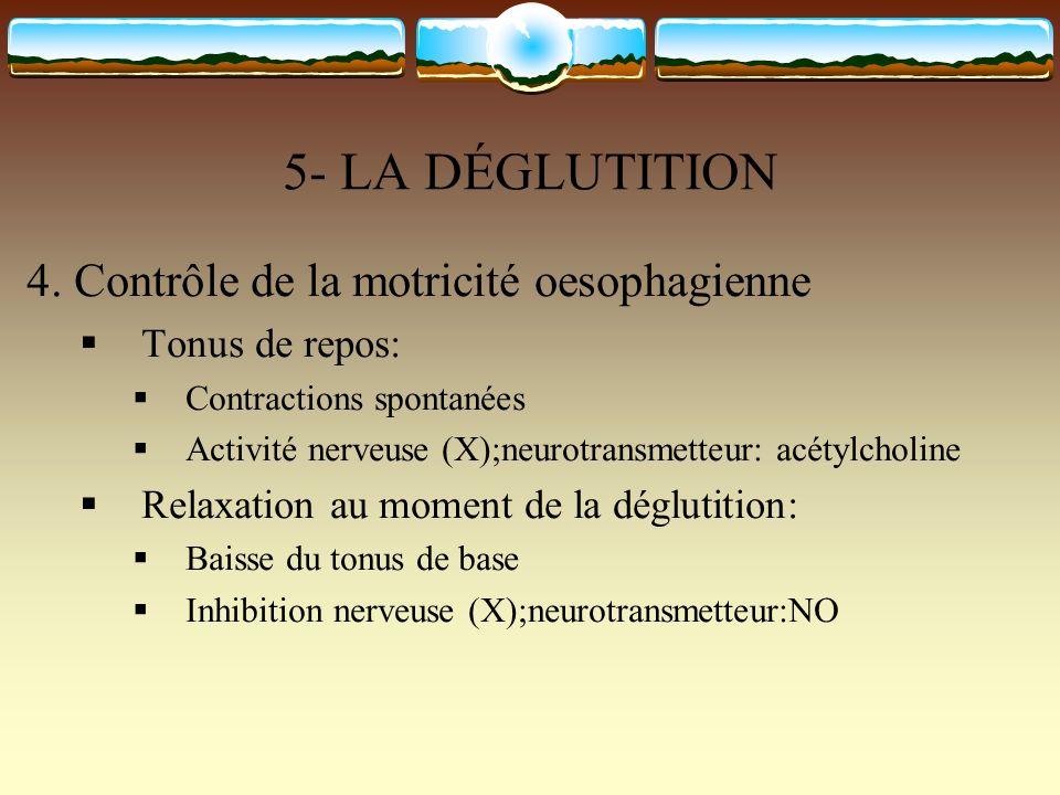 5- LA DÉGLUTITION 4. Contrôle de la motricité oesophagienne