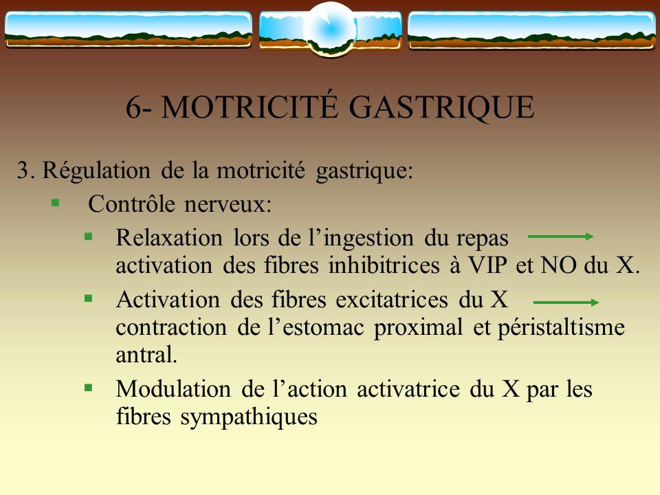 6- MOTRICITÉ GASTRIQUE 3. Régulation de la motricité gastrique: