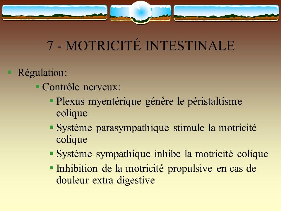 7 - MOTRICITÉ INTESTINALE