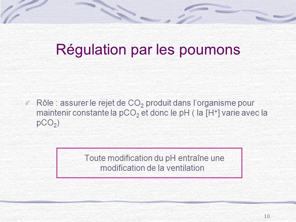 Régulation par les poumons
