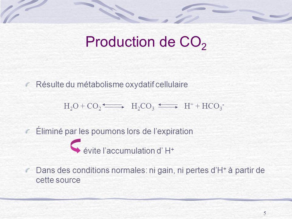 Production de CO2 Résulte du métabolisme oxydatif cellulaire