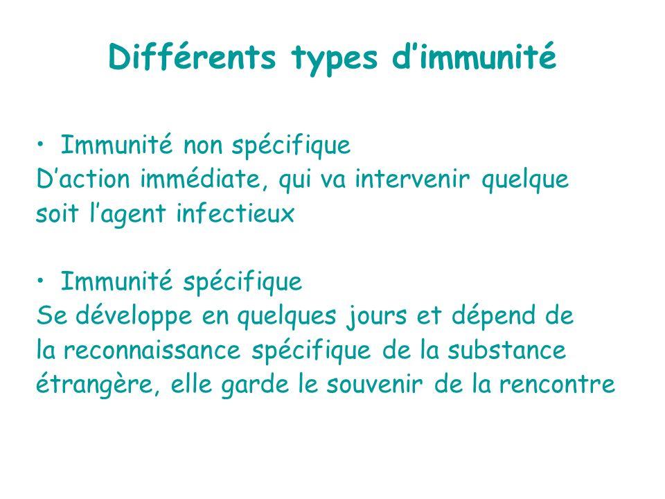 Différents types d'immunité