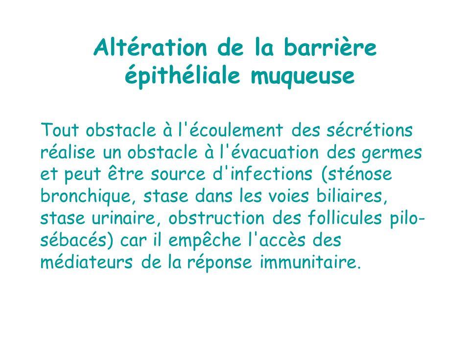 Altération de la barrière épithéliale muqueuse