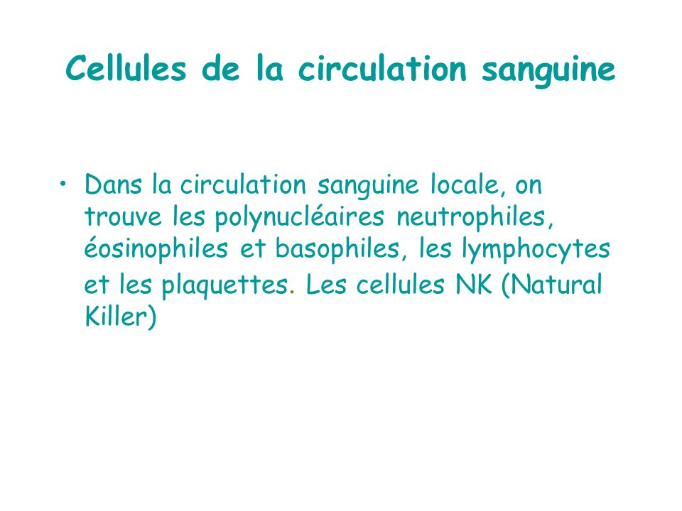 Cellules de la circulation sanguine