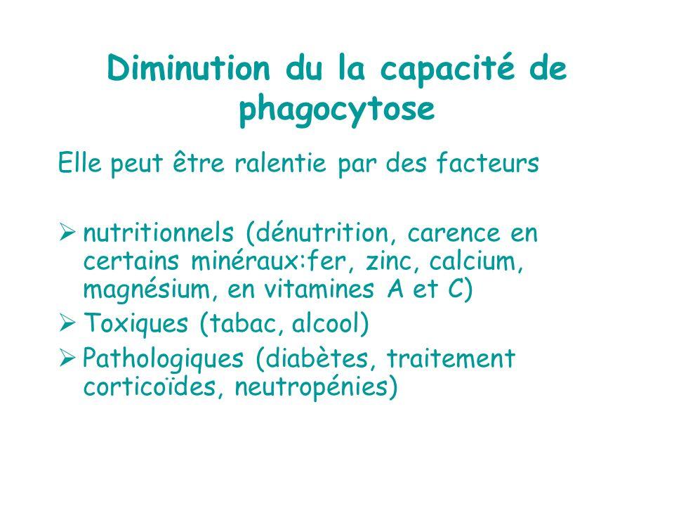 Diminution du la capacité de phagocytose