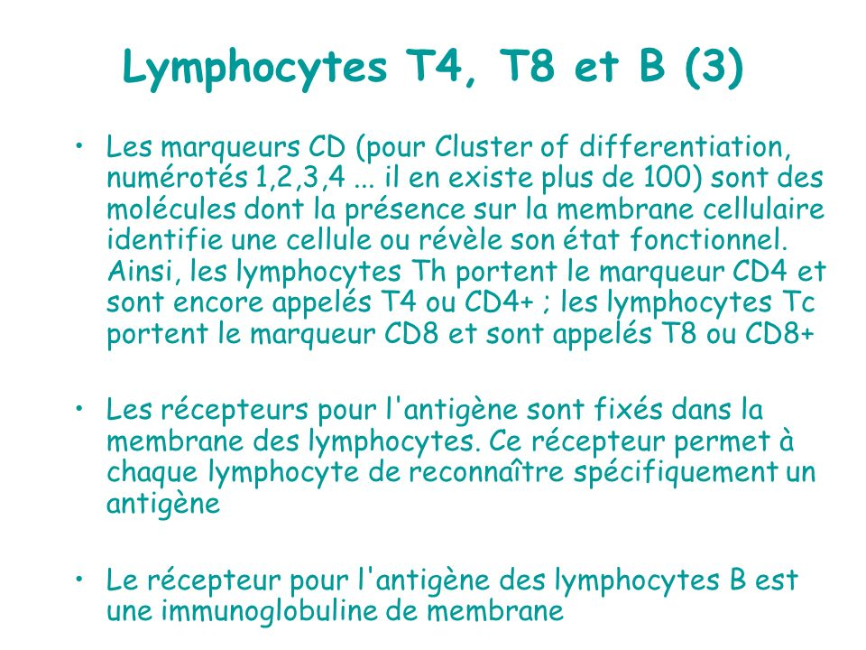 Lymphocytes T4, T8 et B (3)