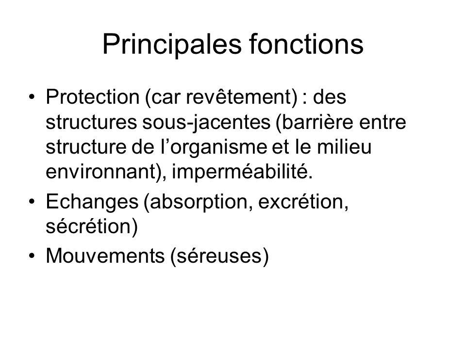 Principales fonctions