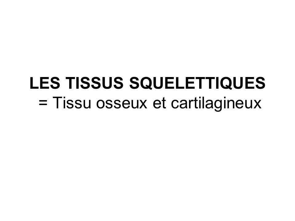 LES TISSUS SQUELETTIQUES = Tissu osseux et cartilagineux